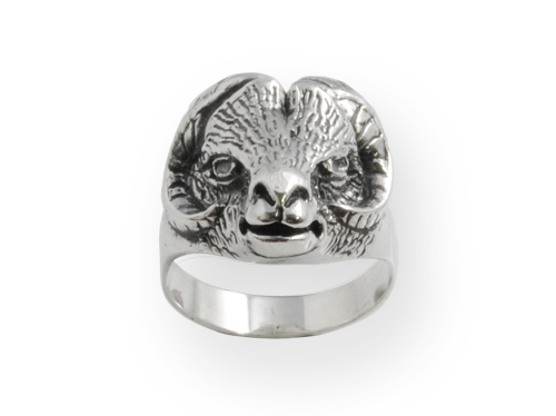 aries silver ring from wild collection